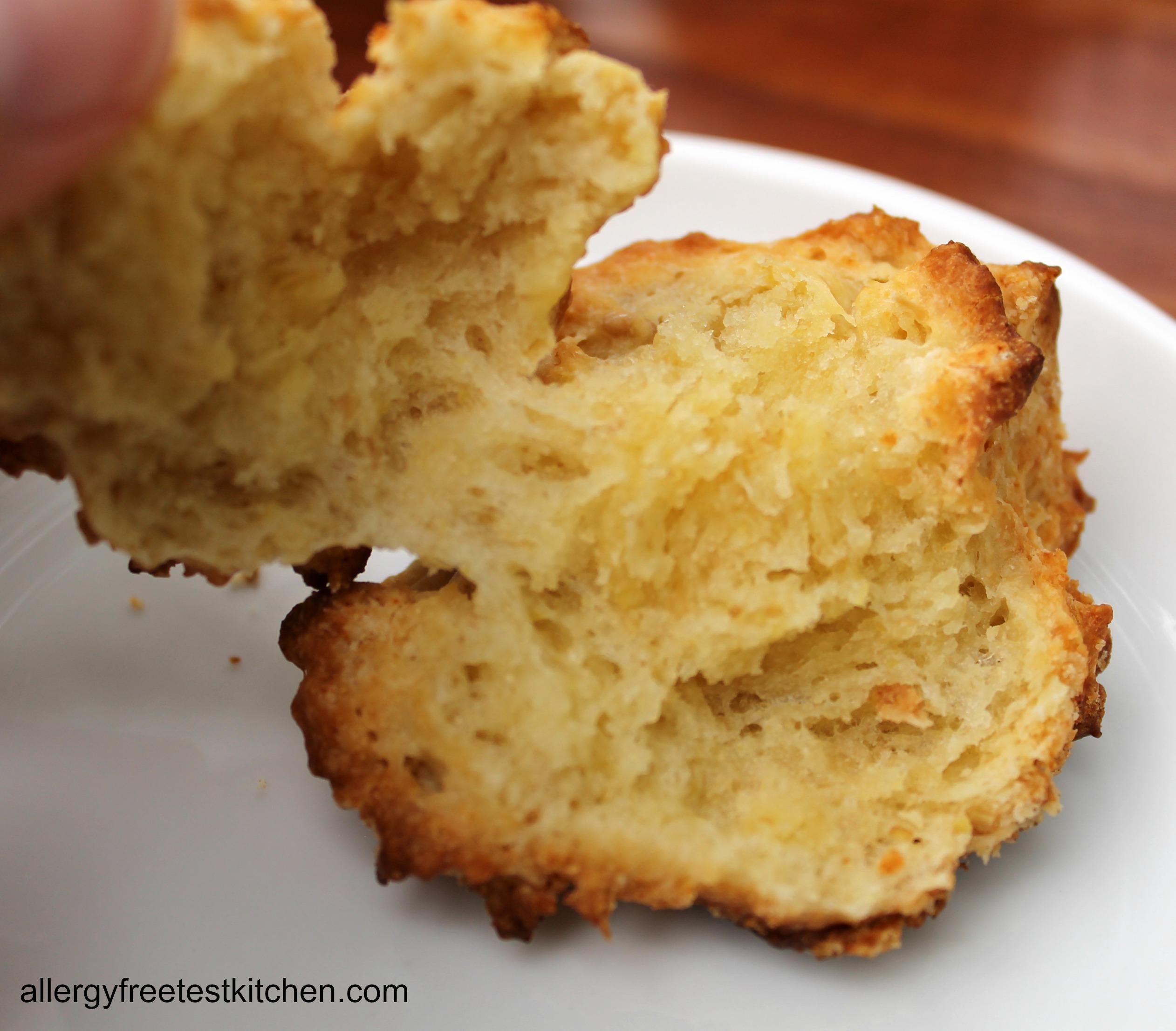 Gluten Free Yeast Free Dinner Rolls