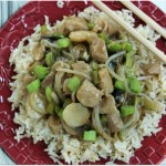 Blog-Pork Chop  Suey