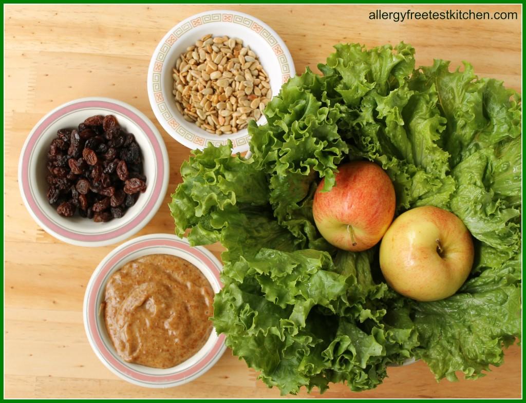 Blog-Waldorf Salad