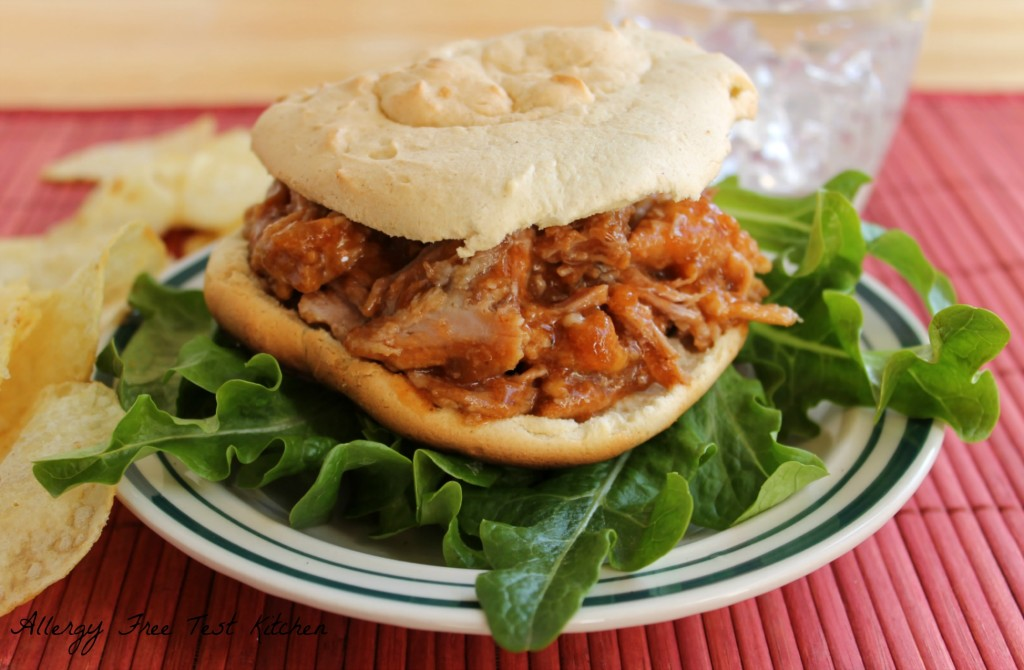 Blog-Shredded Pork