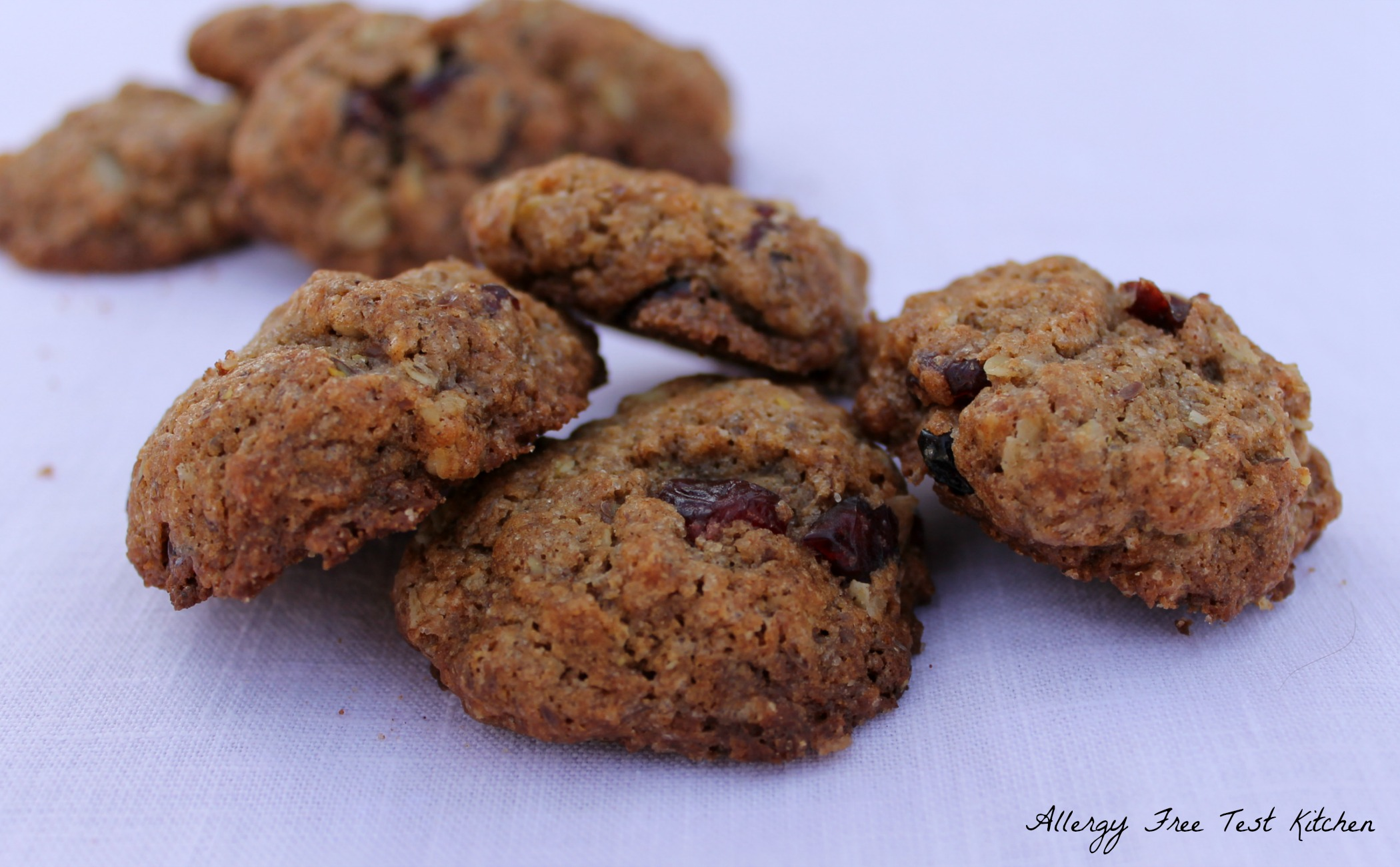 Today I bring you Oatmeal Cranberry Cookies-Allergy Free. Yep, that ...