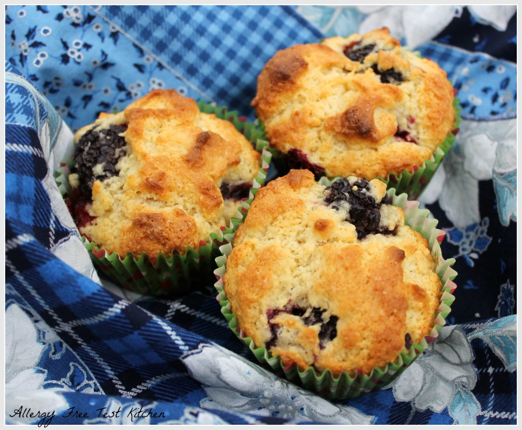 Blog-Blackberry Muffin1