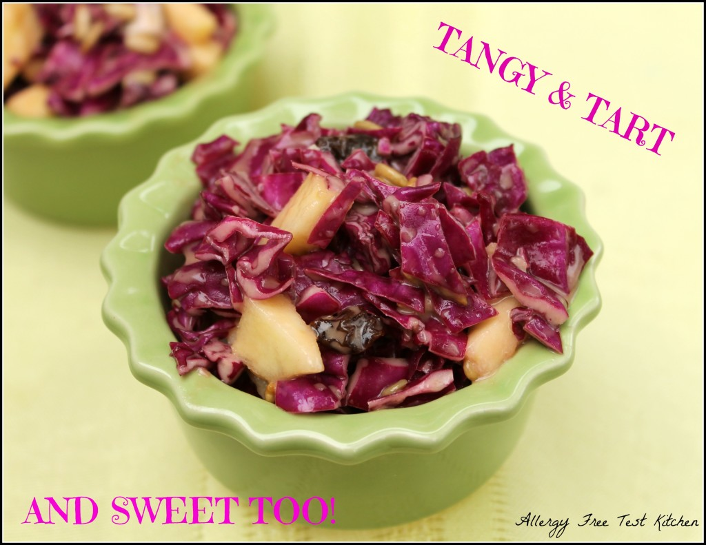 Blog-Red Cabbage Salad