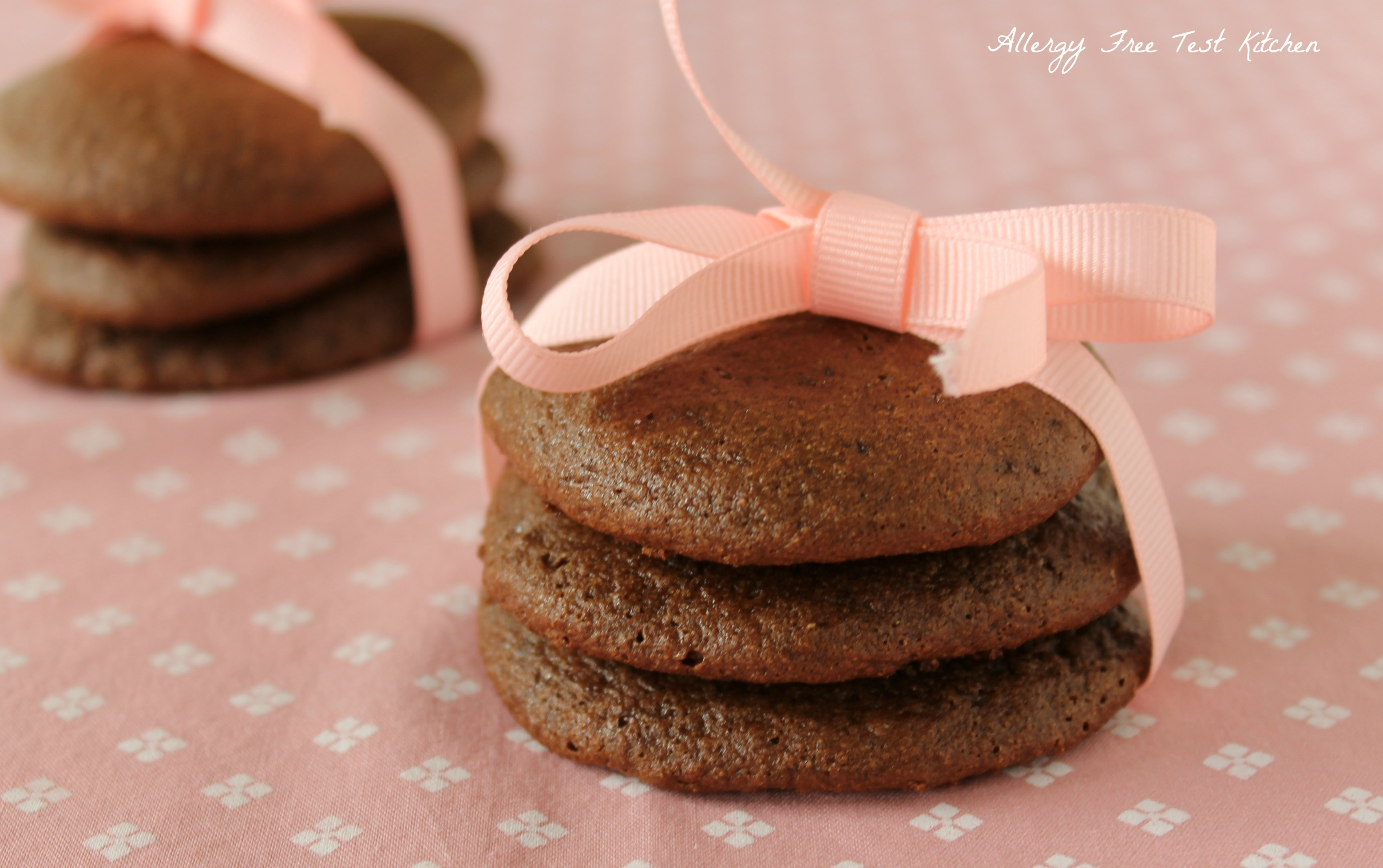 Mississippi Mud Cookies | Allergy Free Test Kitchen
