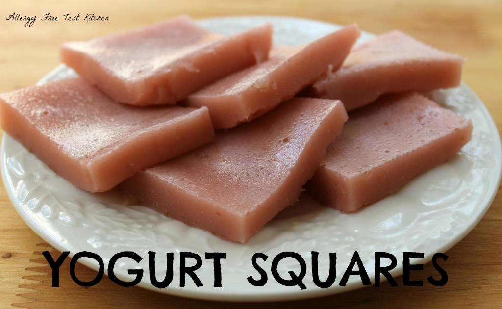Blog-Yogurt Squares