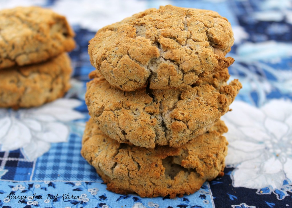 Blog-Grain Free Biscuits