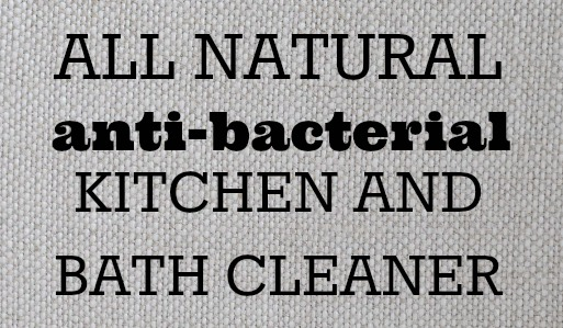 Blog-Kitchen Cleaner